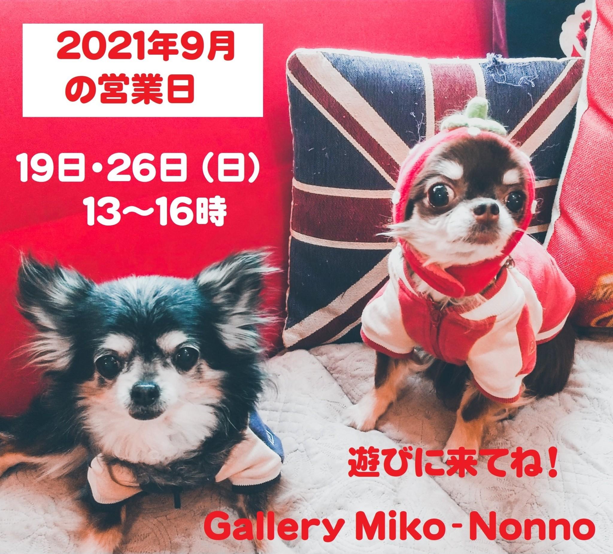 おうちショップ9月の営業予定で~す!